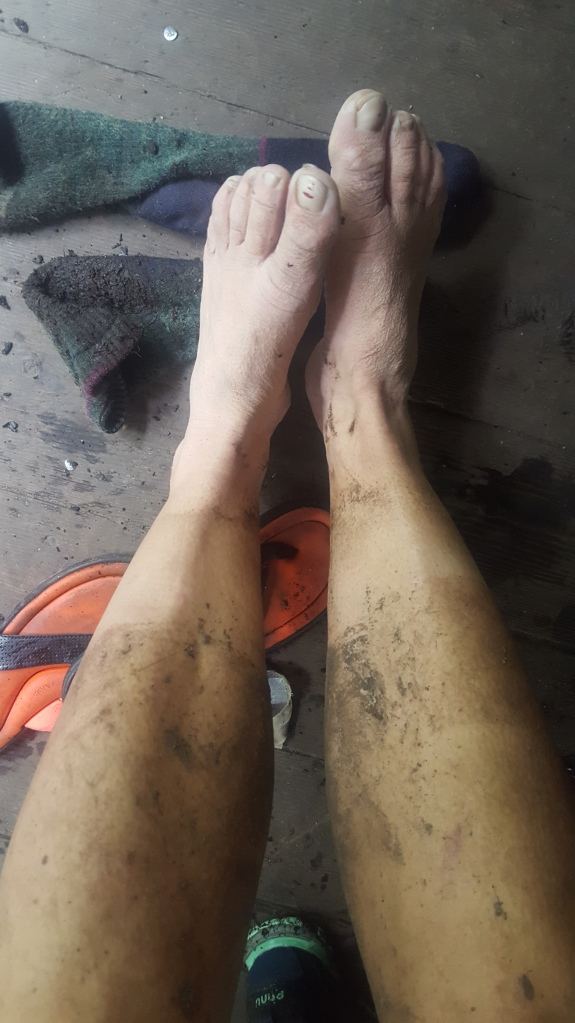 Dirty hiker legs after hiking the Long Trail in Vermont on a rainy muddy day.